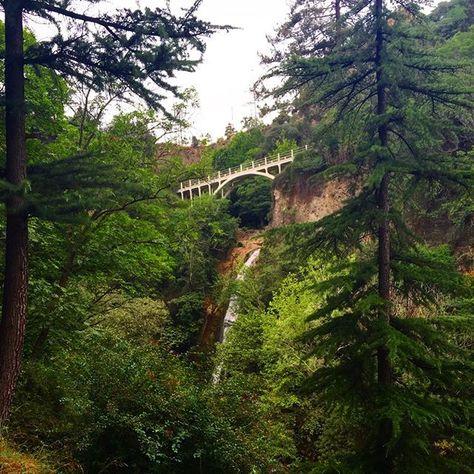 Tbilisi, National Botanical Garden of Georgia #tbilisi #tiflis #georgia #oldtown #oldcity #architecture #bridge #waterfall #nature #urban #art #trip #travel #amazing #tbilisiphoto #tbilisilovesyou #georgiatravelmoments #traveltogeorgia #wowtbilisi #instatbilisi #UefaSuperCup #тбилиси #грузия #ძველითბილისი #ბოტანიკური #თბილისი #საქართველო