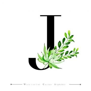 Alphabet Letter J With Watercolor Cactus And Leaves Background Letter A Clipart Watercolor Color Png And Vector With Transparent Background For Free Download Lettering Alphabet Letter J Watercolor Cactus