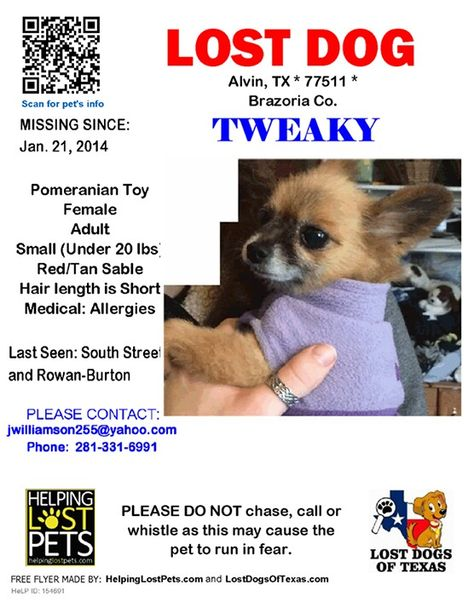 Pin On Lost Pets In Texas