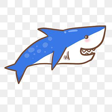 การ ต นปลาฉลาม คล ปอาร ต ฉลามภาพต ดปะ การ ต นน าร กภาพ Png และ Psd สำหร บดาวน โหลดฟร การ ต นน าร ก การ ต น ส ตว