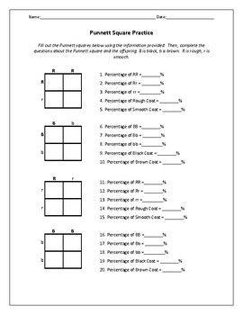 Biology Genetics Worksheets Pedigree Chart Biology Worksheet Worksheets