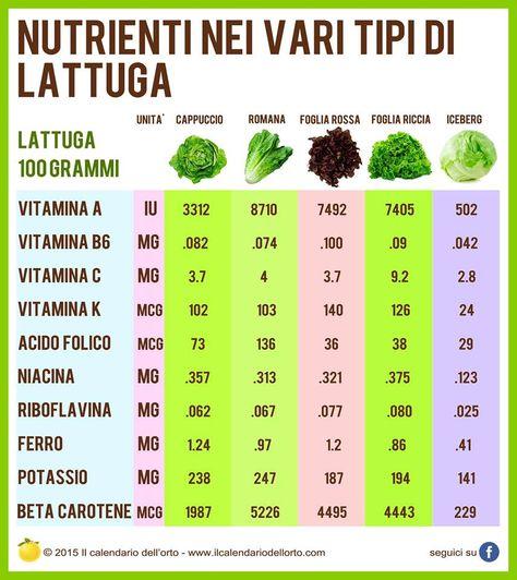 Nutrienti Nei Vari Tipi Di Lattuga Salute E Benessere Consigli Utili E Rimedi