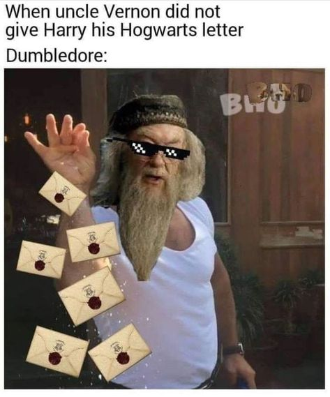 Dumbledore be like: If one Letter doesn't work, I'm sure, a few hundreds will do