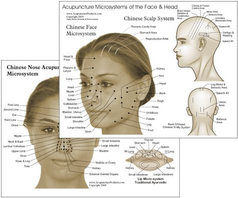 Acupressure Acupuncture.  Nose acupuncture points. - Acupuncture chart of the microsystems of the face and head. The microsystems show associations to body areas and and the main meridian system. The chart includes the Chinese face microsystem, Chinese scalp system, Chinese nose system, lip microsystem from traditional Ayurvedic and teeth organ relationship.
