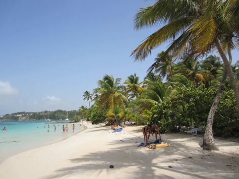Plage De La Caravelle Guadeloupe Magic Beaches Sainte