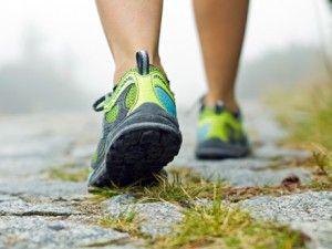 Suburban Walking: A Fruitful Exercise! |