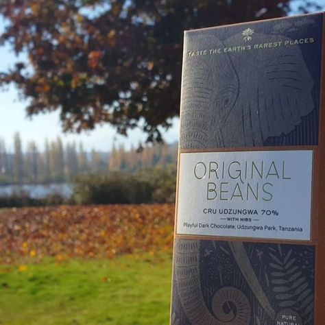 autumn #originalbeans @original_beans...