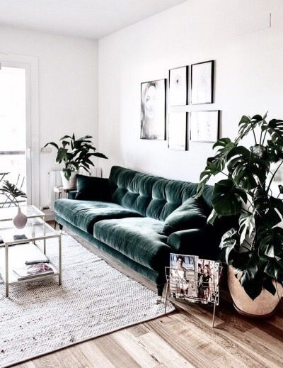 Scandinavian Living Room Green Velvet Sofa With Matching Plants