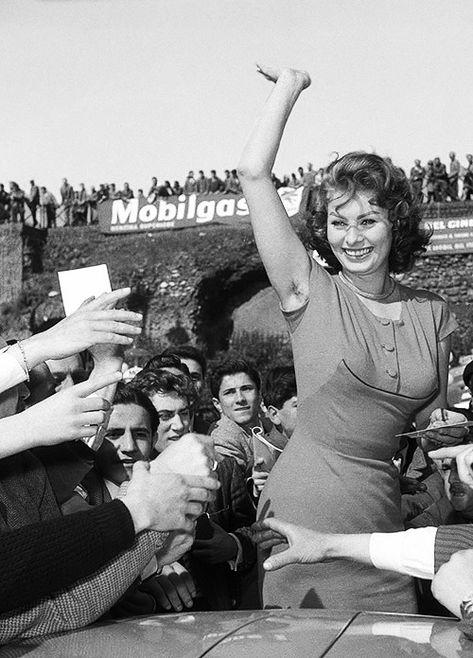 sophia loren — gregorypecks-deactivated2014032: Sophia Loren in...