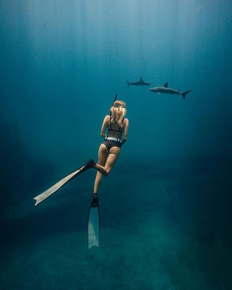 Feeling so alive playing in the ocean almost everyday and this freedive was definitely one of my favorite..watching these beautiful…