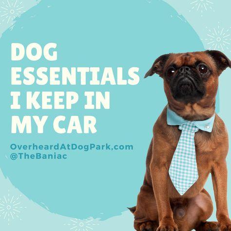 rescuedog http://www.overheardatdogpark....