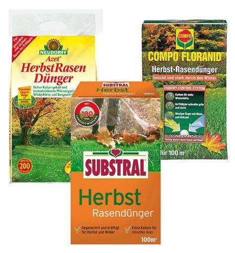 Rasendunger Selbst De Rasen Rasen Dungen Rasenpflege