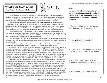 39+ Free printable 7th grade reading comprehension worksheets Top