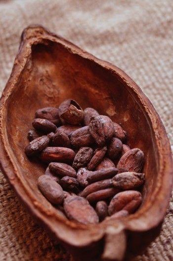 Pin De Abdulla Ahmed En Cacao Pods Alimentos Y Bebidas Recetas Granos De Cacao Frutas Y Verduras