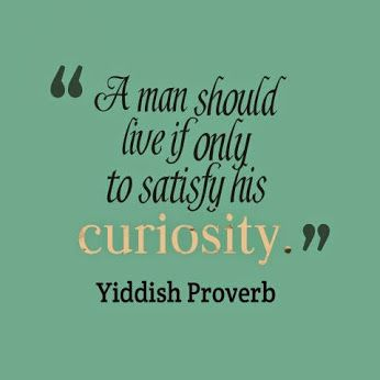 Jewish Quote Of The Day: Smart Person Knows | ... Just A Thought ... |  Pinterest | Jewish Quotes, Wisdom And Learn Hebrew