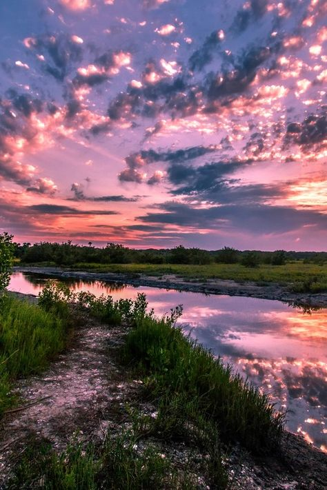 The Colors Of Nature,Marshland