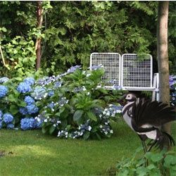 Kleiner Garten Grosses Paradies Gestalten Garten Gestalten Kleiner Paradies New Garten Kleine Garten Garten Ideen