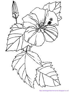 Aneka Gambar Mewarnai Gambar Mewarnai Bunga Sepatu Untuk Anak Paud Dan Tk Printable Flower Coloring Pages Flower Coloring Pages Pattern Coloring Pages