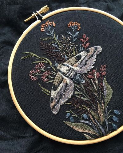 So Beautiful On Black Background Hand Embroidery Stitches Embroidery Art Embroidery Hoop Art