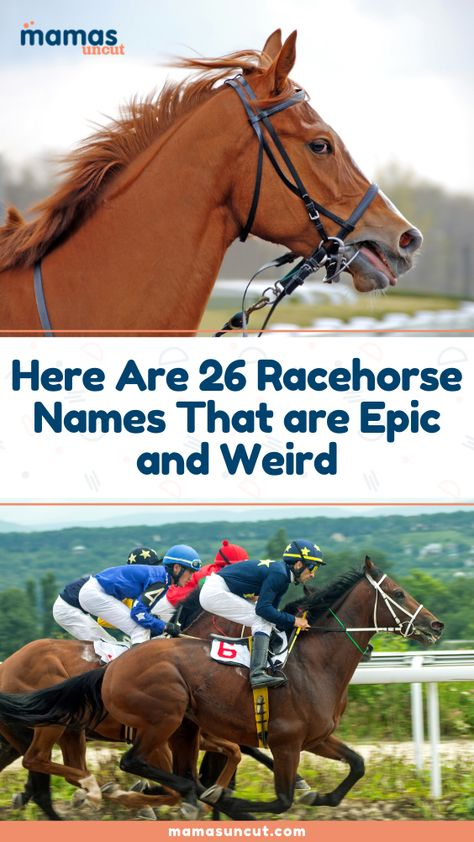 Some of you may enjoy putting a few bucks on a horse race, but my favorite part of horse racing is listening to some of the, let's be honest, crazy racehorse names.