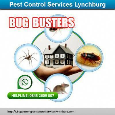 Control Pests From Breaking Into Your Gardens And Spoil Your Gardening Spirit Pest Control Natural Pest Control Pests