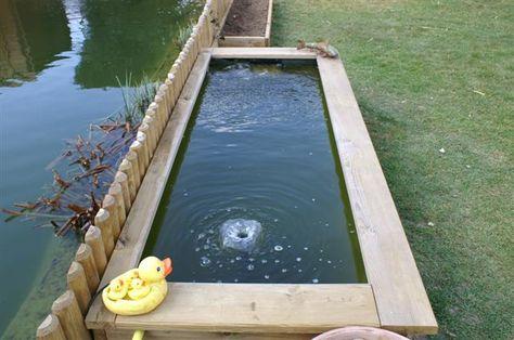 Le Forum De Passion Bassin Bassin De Jardin Baignade Naturelle