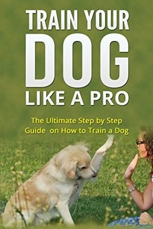 Train Your Dog In 60 Days Guaranteed Develops Your Dog S Hidden