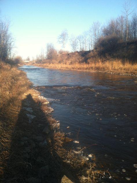 East Branch Au Gres Fly Fishing River Lake Huron