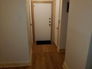Spacious 21 2 Connaught Patricia Newly Renovated 700 Appartement A Vendre Montreal Ville