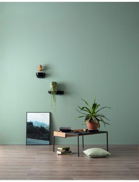 Schoner Wohnen Farbe Farbe Designfarben Erhabenes Agavengrun Nr 27 Feinmatt 2 5 L H Schoner Wohnen Wandfarbe Schoner Wohnen Farbe Malerei Wandgestaltungen