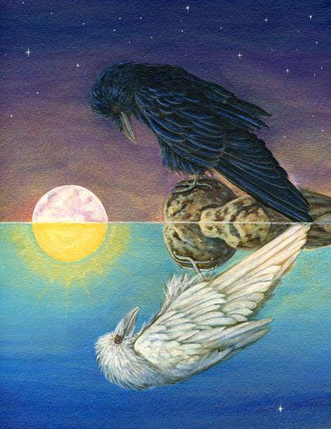 Raven, Crow, et Corbacs  52b0e3189129cc2a8c26290484fca318--crows-ravens-shamanism