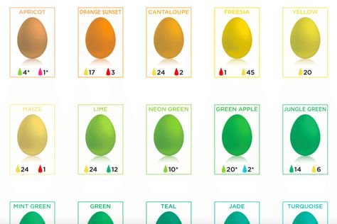 Easter Egg Dyeing Chart Shows Every Color Simplemost Easter Egg Dye Coloring Easter Eggs Food Coloring Chart