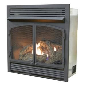 Procom 29 In Ventless Dual Fuel Fireplace Insert With Remote