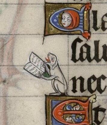 JohanOosterman: Very tiny dog reading an even tinier book