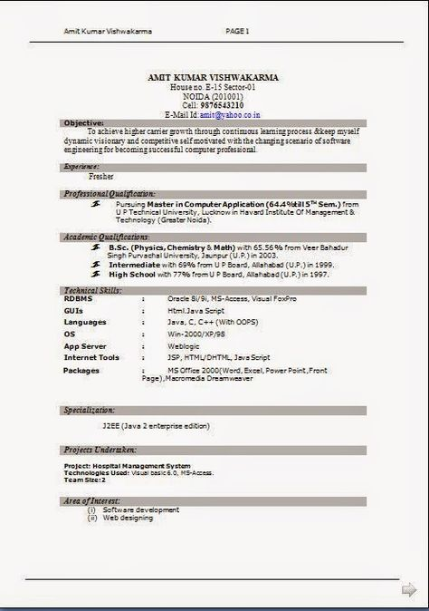 free format for resume Sample Template Example ofExcellent CV - j2ee jsp resume