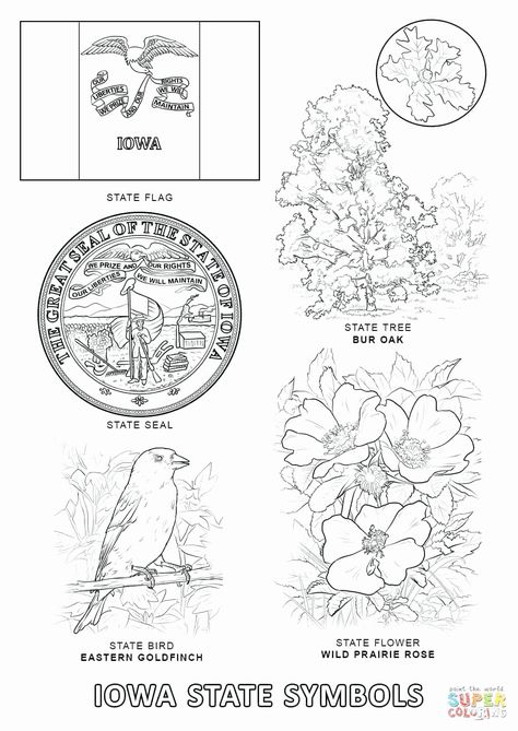 California State Bird Coloring Page In 2020 Flag Coloring Pages