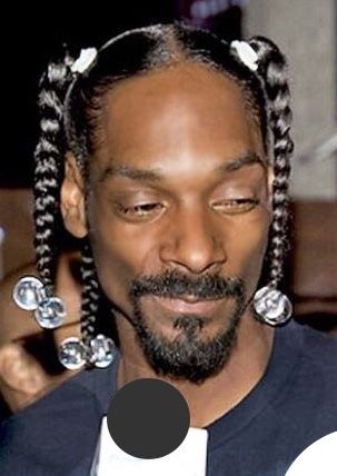 Pin By Pouchon Dubois On Snoop 4 President Cool Braid Hairstyles Mens Braids Mens Braids Hairstyles