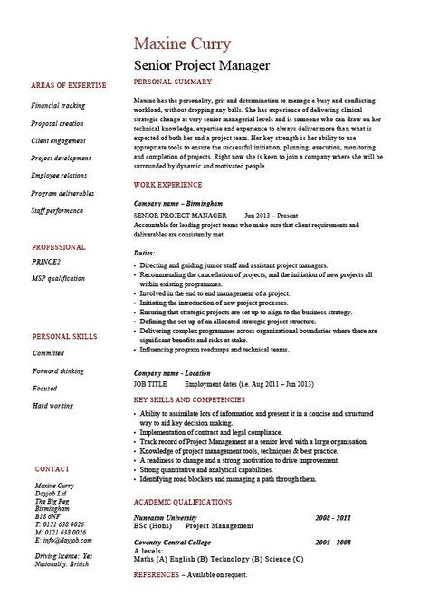 Senior project manager resume, sample, example, references, job - account management resume