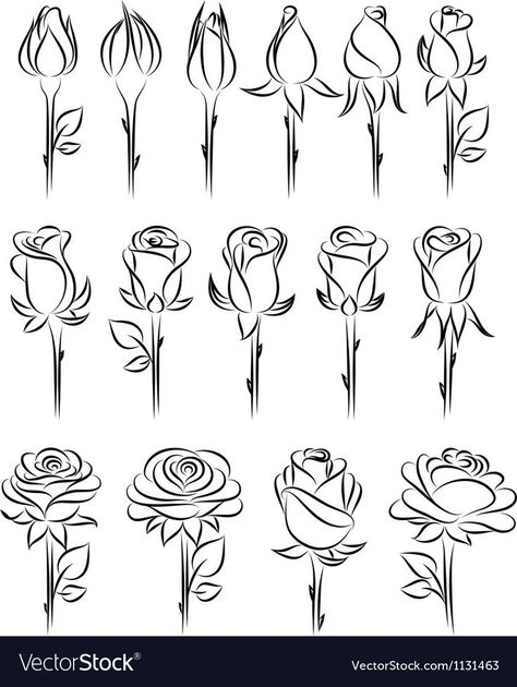 Doodle - Verzierungen Lettering Rose drawing - doodle Ornamental Fountain Article Body: The word 'Fo How To Make Drawing, Drawing Tips, Drawing Sketches, How To Draw Roses, Easy Rose Drawing, Drawing Drawing, Drawing Ideas, Sketching, Flower Drawing Tutorials