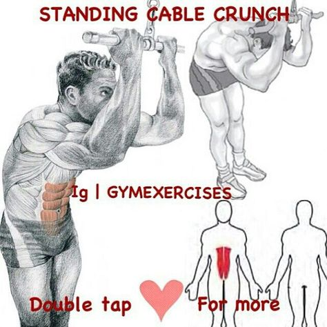Cable Crunch | Ab Exercises and Workouts | Pinterest | Workout ...