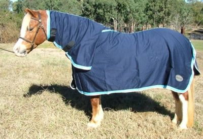 Minicraft Cotton Combo Navy Light White Mini Rugs Pinterest Horse