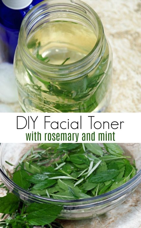 Summer Skin Care Tips and DIY Rosemary Mint Facial Toner - - This DIY facial toner with rosemary and mint is the perfect addition to your summer skin care routine. Homemade facial toner helps control oil and fight summer acne! Loción Facial, Facial Toner, Skin Toner, Diy Toner Face, Diy Beauty Hacks, Beauty Ideas, Diy Beauty Care, Summer Skin Care Tips, Homemade Skin Care
