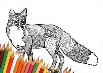 Volpe Pagina Da Colorare Volpe Disegno Da Colorare Volpe Disegno Volpe Stampa Pagina Stampabile Autunno Download Disegno Da Stampare Fox Coloring Page Coloring Pages Animal Art