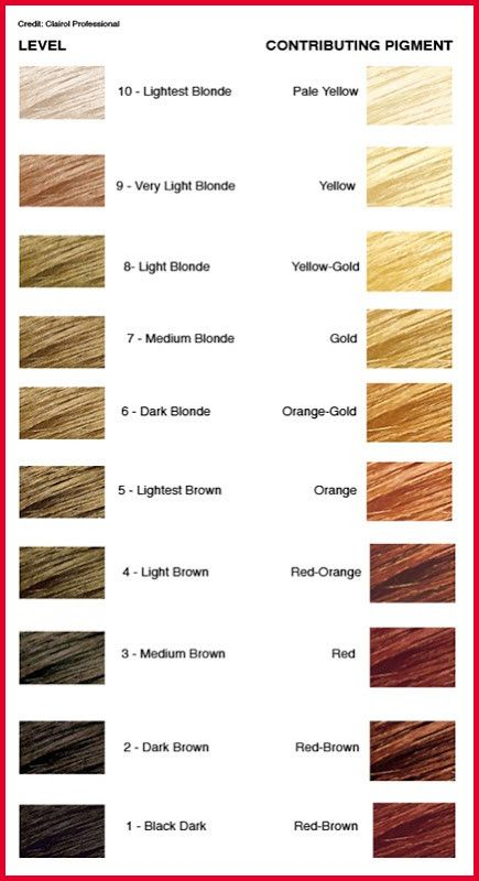The Level System In Hair Color Simple To Understand Universal From Hair Color Base Chart Source Killers Hair Color Chart Hair Color Schwarzkopf Hair Color