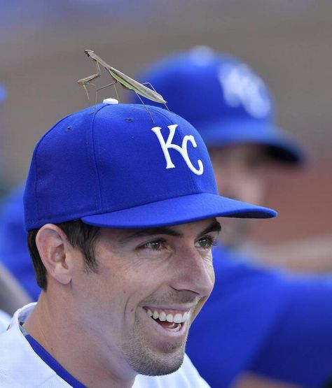 Kansas City Royals' Billy Burns had some helpful praying going on in the form of a praying mantis on his hat during Saturday's baseball…
