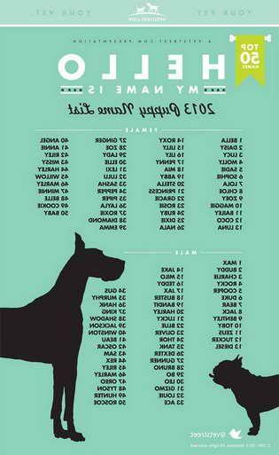 Girl Pug Names
