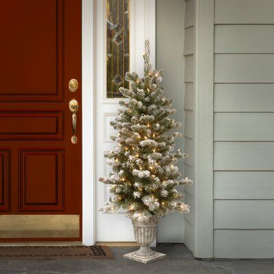 Https Secure Img1 Fg Wfcdn Com Im 10580207 Resize H400 W400 5ecompr R Front Door Christmas Decorations Gold Christmas Tree Decorations Christmas Tree Outside