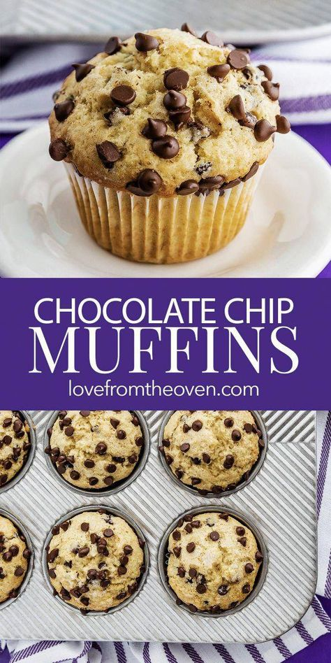 This easy Chocolate Chip Muffin recipe is perfect for an easy breakfast or delicious afternoon snack. Made with simple ingredients, these muffins freeze well! #muffins #chocolatechip #recipe #baking #breakfast #snack #chocolatechipmuffins #chocolatemuffins