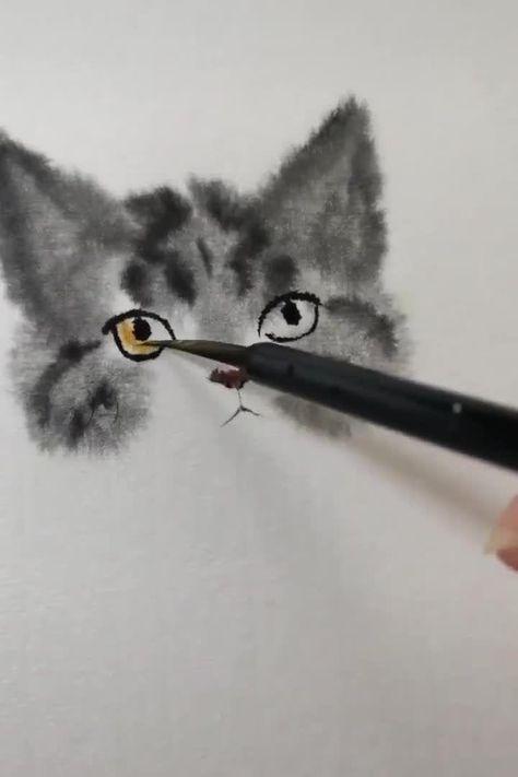 Cat gut