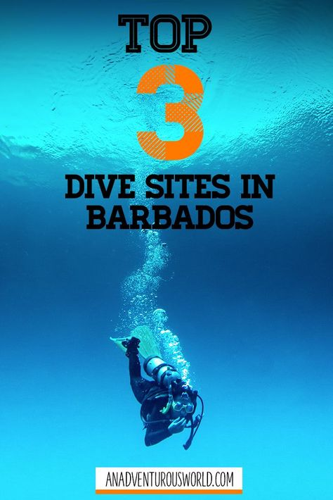 We All Dive at the Yellow Submarine, Barbados - This is what it's like diving the SS Stavronikita, the Pamir, & the yellow submarine - 3 of the best dives in Barbados! >> Click through to read the full post! << #Barbados #Caribbean #TheCaribbean #Diving #ScubaDiving #WreckDiving #BestDiveSites #Adventure #Travel #Travelling #Water #Ocean
